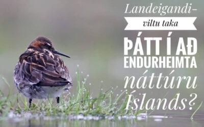 Viltu taka þátt í að endurheimta náttúru Íslands?
