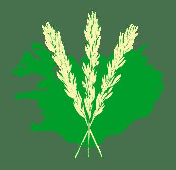 Landgræðsla