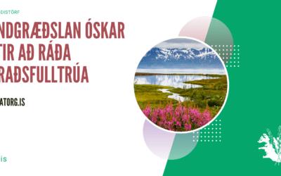 Störf-Héraðsfulltrúi á héraðssetrið á Húsavík