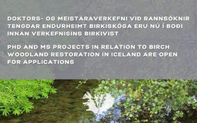 Doktors- og meistaraverkefni í boði – PhD and MS projects