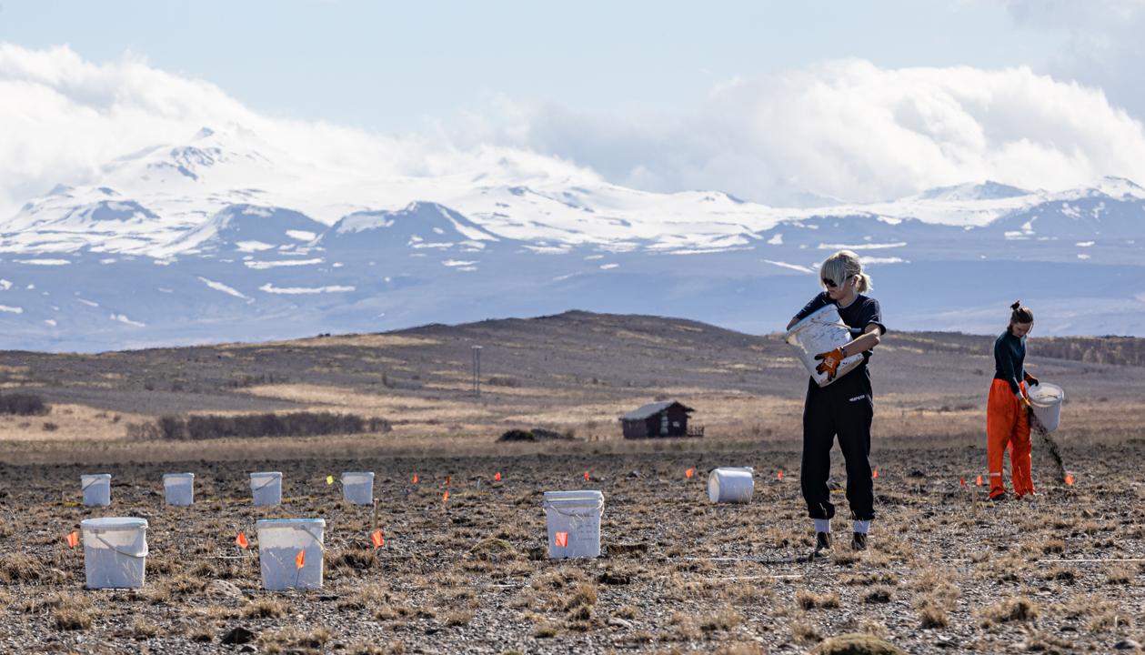 Landgræðslustjóri afhendir bændum Stóru-Mörk III landgræðsluverðlaunin 2021